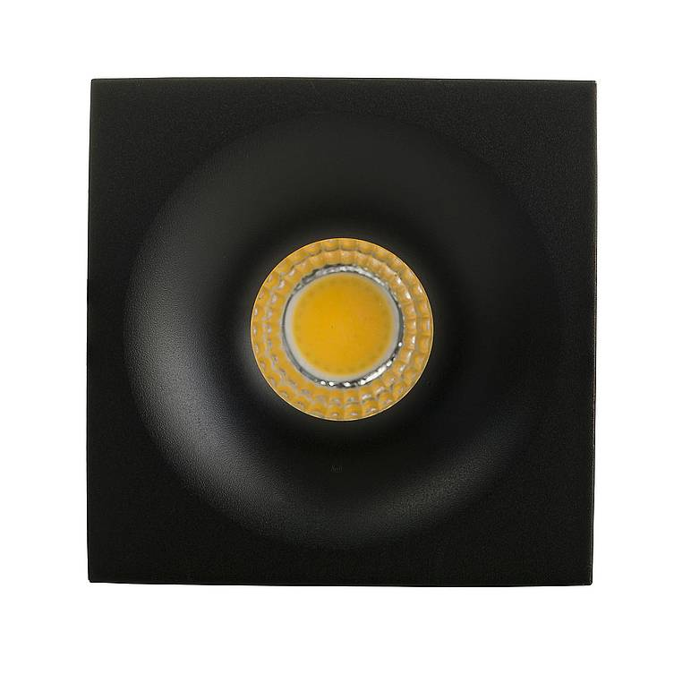 Niche Aluminum LED Downlight